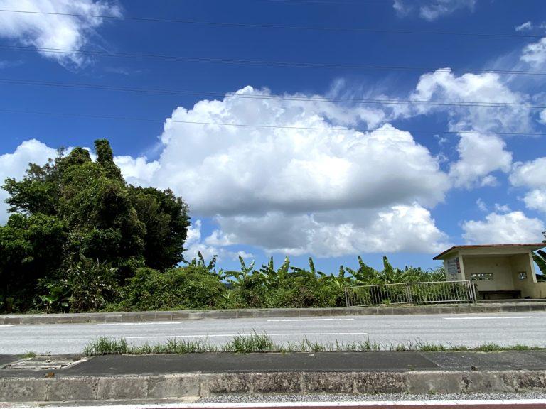 沖縄旅行(2020年)-①本島めぐり